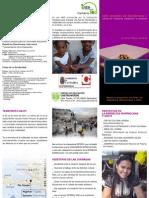folleto_solidaridad