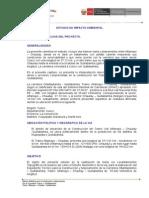 Informe Ejecutivo Impacto Ambiental