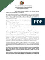 Bolivia - Tribunal Constitucional Plurinacional