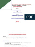 Informe de Estructuras de Acero 10 Fotos