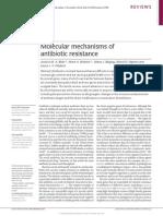 Molecular Mechanisms of Antibiotic Resitance