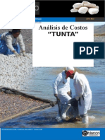 Analisis de Costo de La Tunta Final