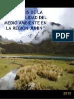 Analisis de La Sostenibilidad Del Medio Ambiente en La Region Junin