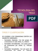 TECNOLOGIA DEL TRIGO.pdf