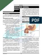 6. Fisiologia Animal - Sistema Reprodutor