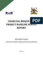 Charcoal Briquettes Project Baseline Survey Report