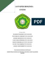 Paper Enzim