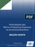 Relatório - Região Norte .pdf