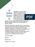 Proyecto Zoologico
