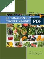 56 Tanaman Buah Tropis Indonesia