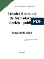 proiect Tehnici si metode de elaborare a deciziei publice