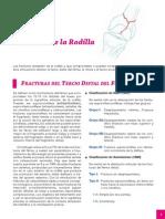 4_Rodilla.pdf