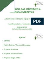 Cristiane_camara-alema-22.10.2012.pdf
