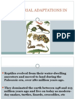 TERRESTRIAL ADAPTATIONS IN Reptiles.pptx