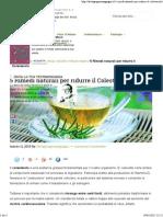 5 Rimedi naturali per ridurre il Colesterolo.pdf