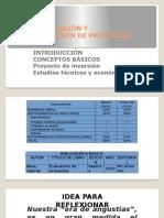 proyecto de inversion Presentación1.pptx