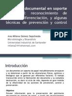 Gómez, Milena. Deterioro Documental en Soporte de Papel