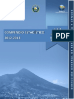 Compendio Estadistico 2012 2013