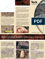 Arqueologia Teck