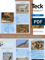Fauna Teck