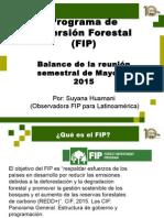 FIP Balance Semianual Webinar 03 de Junio