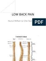 Backpain ortho