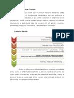 Desarrollo y Evolución Del Currículo_andreinagarces