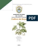 Cultivo de soya