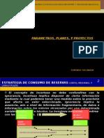 Parametros, Planes, y Proyectos