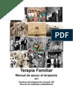 2011 Manual Det f