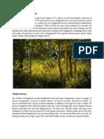 Natural History and Wildlife Diversity of Bangladesh