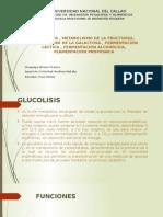Bioca ..Glucolisi y via de Las Pentosas