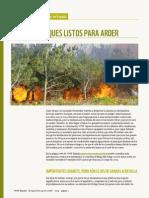 Bosques listos para arder - Informe WWF