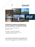 ScorePP D5.5 Production, treatment and disposal of PP contaminated sludge, 2010-03-23.pdf
