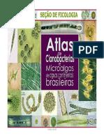 Atlas Microalgas Instituto de Botânica