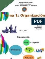 Presentación de Organizacion