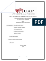 MONOGRAFIA DE PRUEBAS COMPUTARIZADAS (3).doc