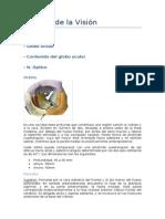 Aparato Visual - Grupo a-7