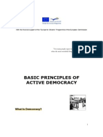 Basic principles of active democracy