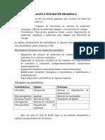 Bioquimica - 4 Parcial Material