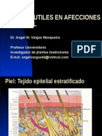 Afecciones de La Piel (1)