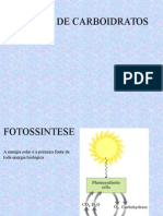 FOTOSSINTESE.pdf