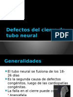 Defectos Cierre Tubo Neural