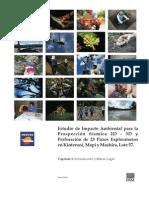 Cap 1-.pdf