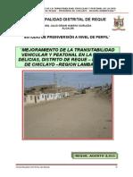 Perfil de Pavimentacion Las Delicias
