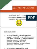 2. PENGANTAR METABOLISME