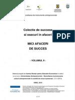 Mici Afaceri de Succes_vol II