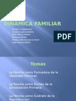 Dinamica Familiar Expo