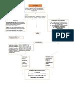 Mapa Conceptual ISO 14000