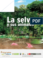 La Selva y Sus Animales